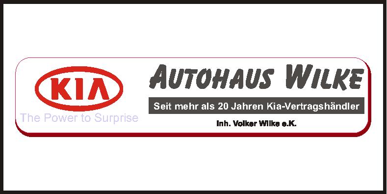 2020-13-wilke-logo